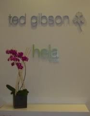 Ted Gibson Hela